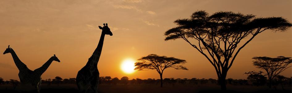 topafrika